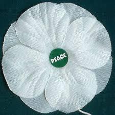 peace poppy